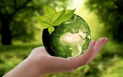 Éveil environnemental | Une approche globale