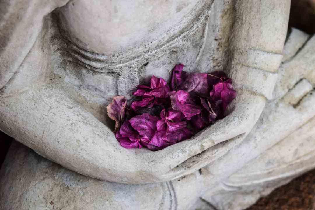 La vie et l'enseignement de Bouddha