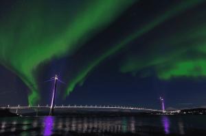 Northern Lights in Narvik Norway
