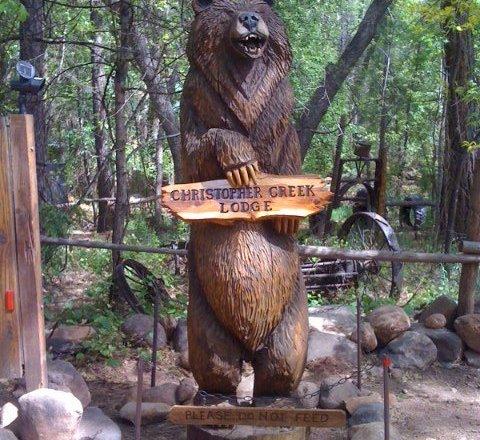 Bear in Christopher Creek AZ