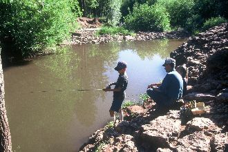 Fishing in Christopher Creek