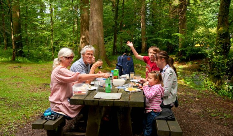 Family Picnicking in Christopher Creek