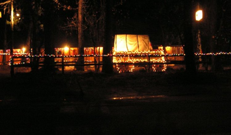 Christmas Lights in Christopher Creek