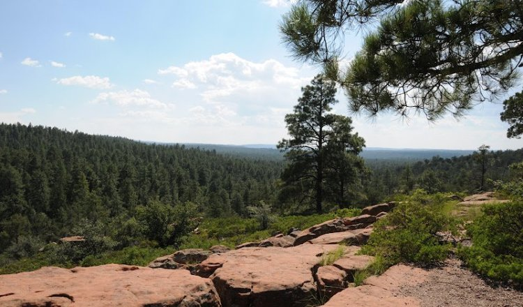 Mogollon Rim near Christopher Creek