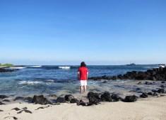 Galapagos-2017-11