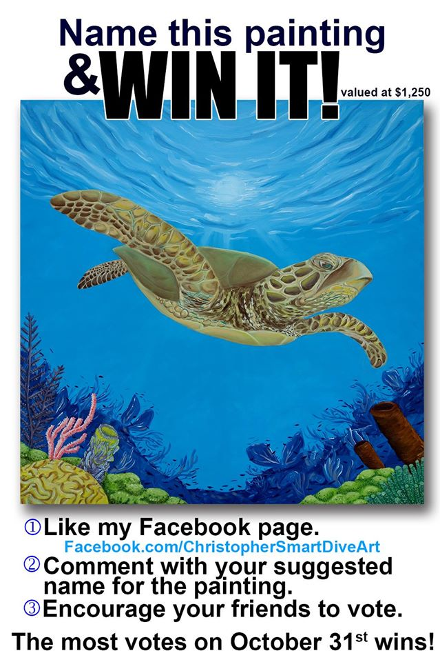 Sea turtle painting contest