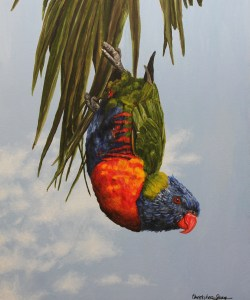 Lorikeet playing by the river
