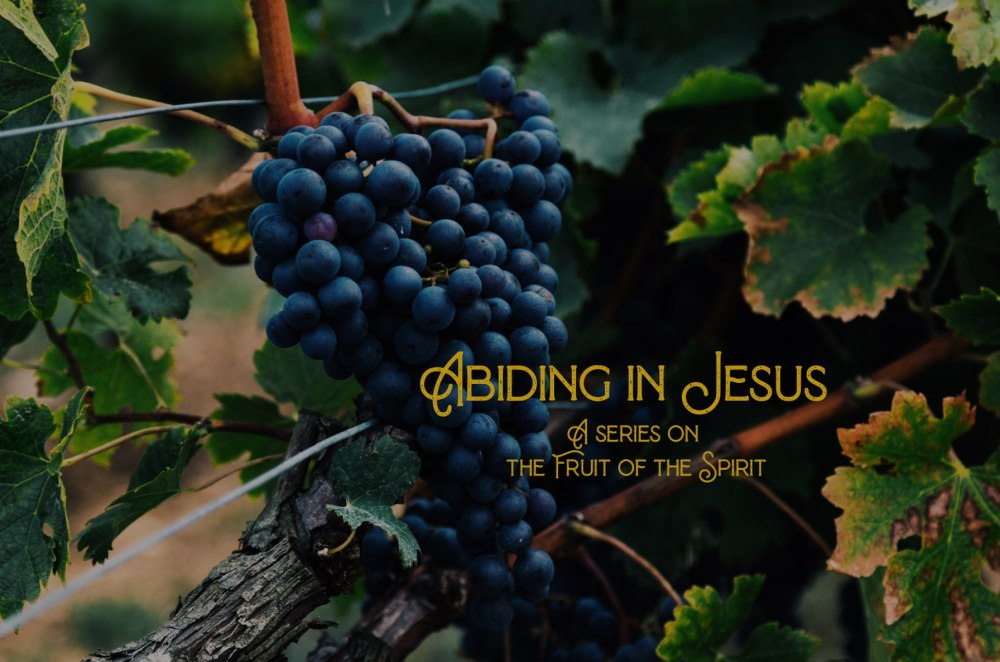 Abiding in Jesus: A Series on the Fruit of the Spirit