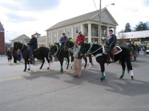 St. Patty's Parade 2010