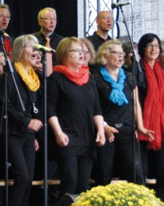 Projektchor beim Auftritt 2014 (Foto: Christian Werner)