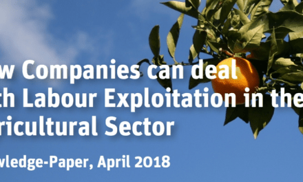 LÖNING – Human rights. Business. The future. How Companies can deal with Labour Exploitation in the Agricultural Sector ?