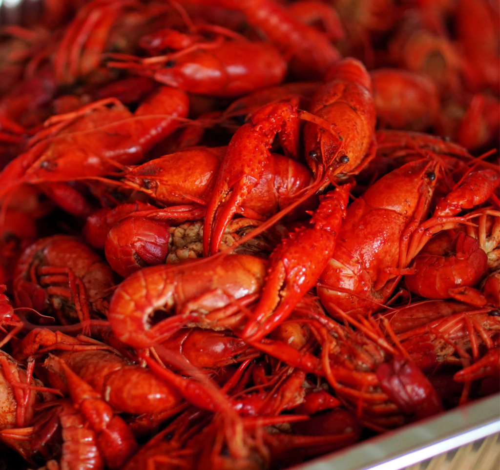 Freshly boiled crawfish