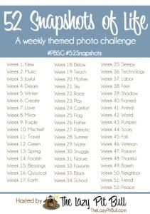 52-Snapshots-of-Life-blog