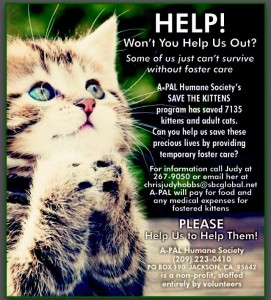 A-Pal Humane Society Won't You Help Us Foster Poster