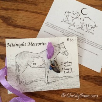 Pendant from Midnight Calico Farm
