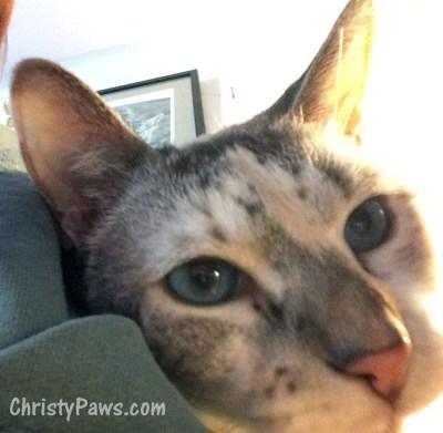 Christy selfie