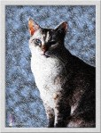Caturday Art: Blizzard - Our First Snow