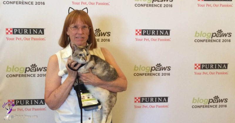 BlogPaws Conference, Phoenix, AZ, 2016 - Why my cat diet for weight loss didn't work
