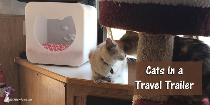 Two Cats in a Travel Trailer -- Preparing for the Adventure #TrippinWithChristy