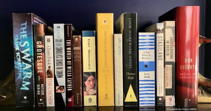 #TBR2018RBR WildmooBooks