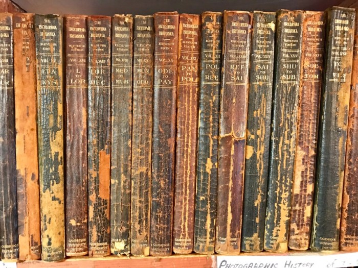 The Encyclopedia Britannica (WildooBooks.com)