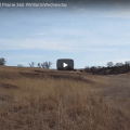 360 Video of The Willa Cather Memorial Prairie (WildmooBooks.com)
