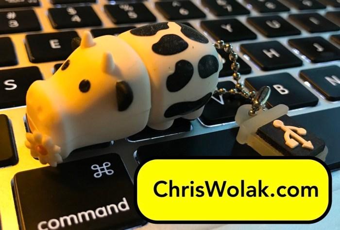 cow thumb drive sitting on a keyboard