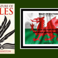 Featured image for The Literature of Wales by Dafydd Johnston (chriswolak.com)