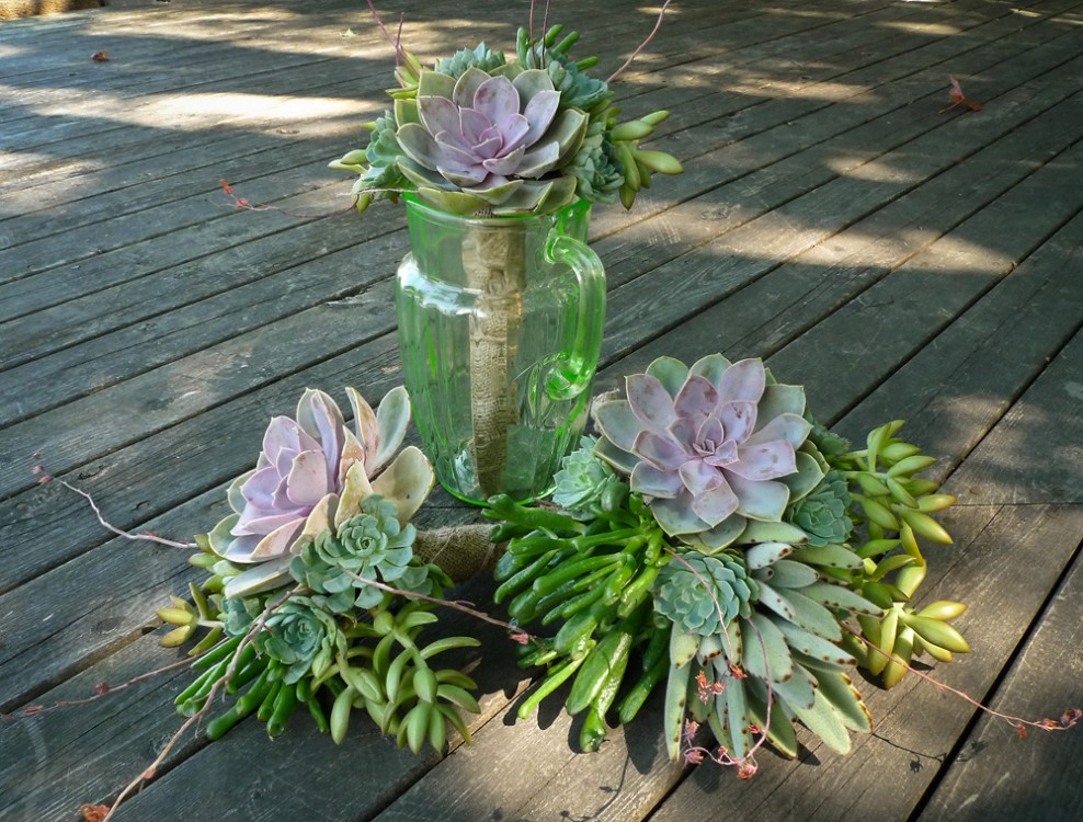 Katie wanted to make her own succulent bouquets, learning how to make them by watching YouTube videos. I gave her a hand with all the hand-wiring and assembling — and they turned out great.