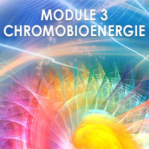 Module 3 Praticien en Chromobioénergie @ Centre Biophinity