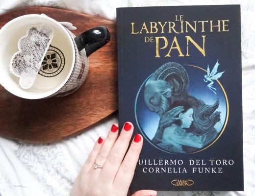 Le Labyrinthe de Pan livre