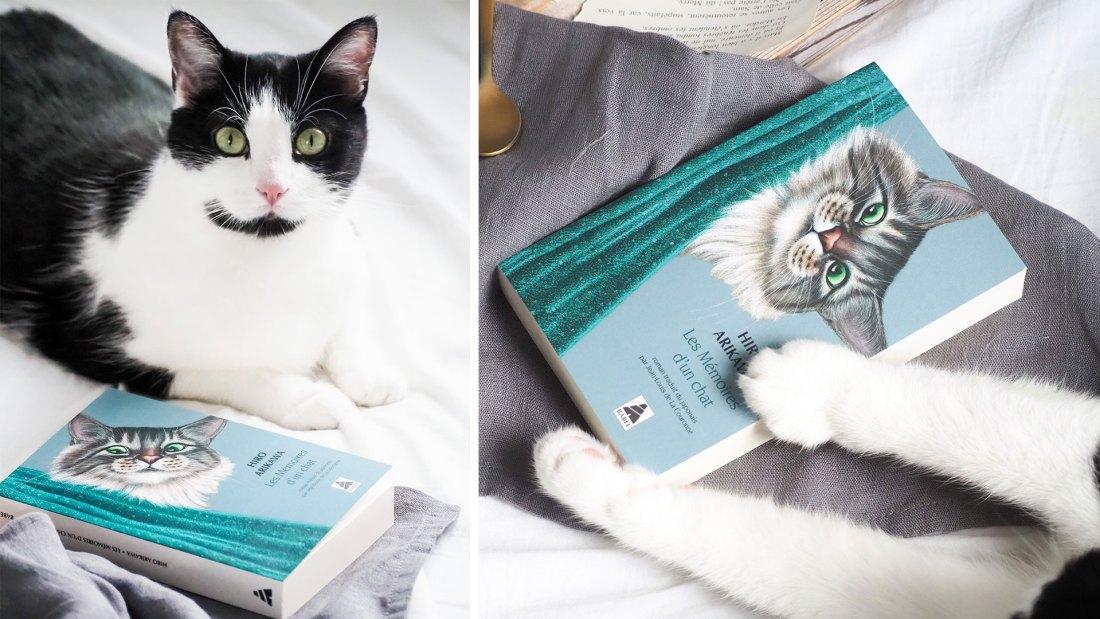Les Memoires un chat Hiro Arikawa
