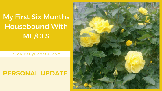 Yellow roses on the right, Title on the left reads: My first 6 months housebound with MEcfs.
