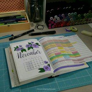 Bujo Nov schedule