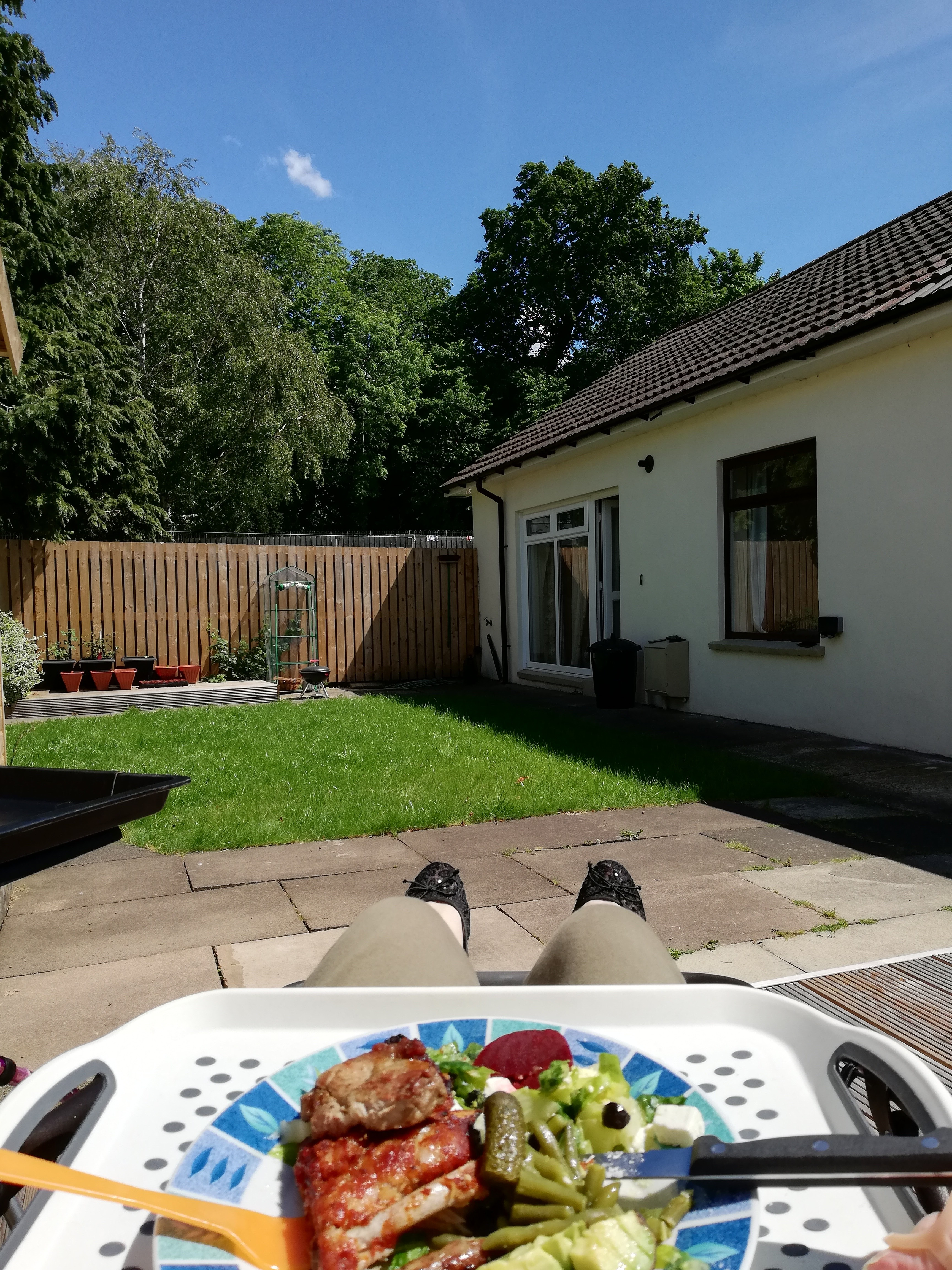Char's view while lying on the garden recliner. You can see her feet and her plate of food. In the distance a patch of grass, wooden fence and trees in the distance.