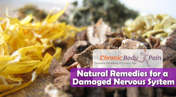 Natural Remedies for a Damaged Nervous System