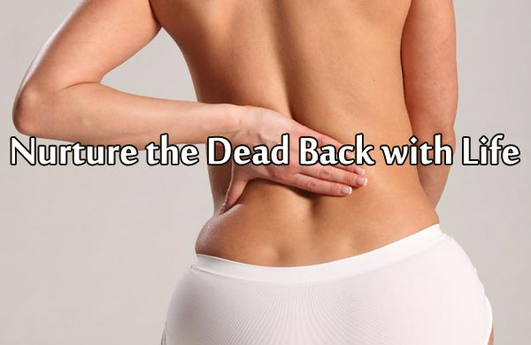 Nurture the Dead Back with Life
