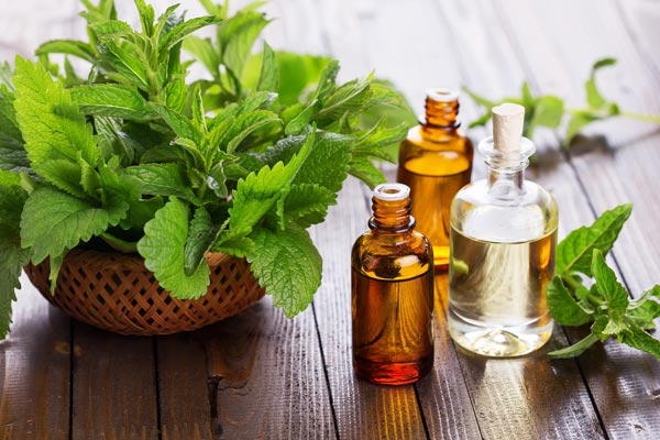 Peppermint Oil for Joint Pain