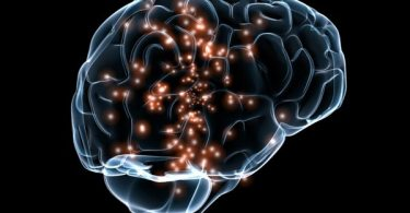 What is encephalitis
