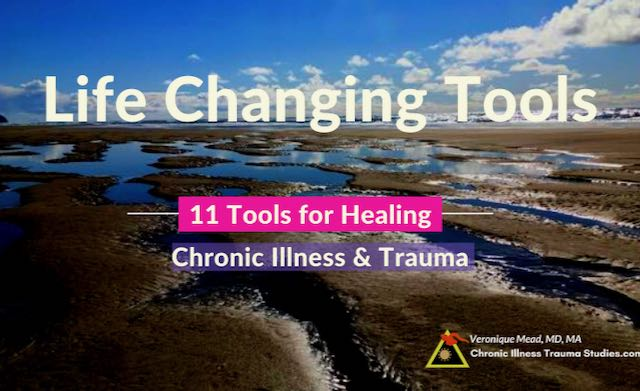 Healing Chronic Illness Tools Life Changing Mead CITS.