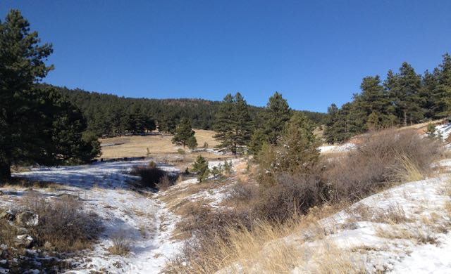 A Christmas hike in the blue blue skies of Colorado