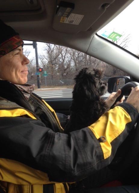 Sadie here with her human mom, helping me drive