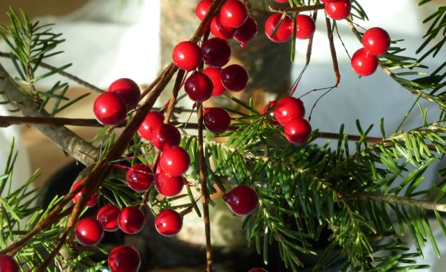 A new tradition I've come to love with the vibrant red from these berry stems