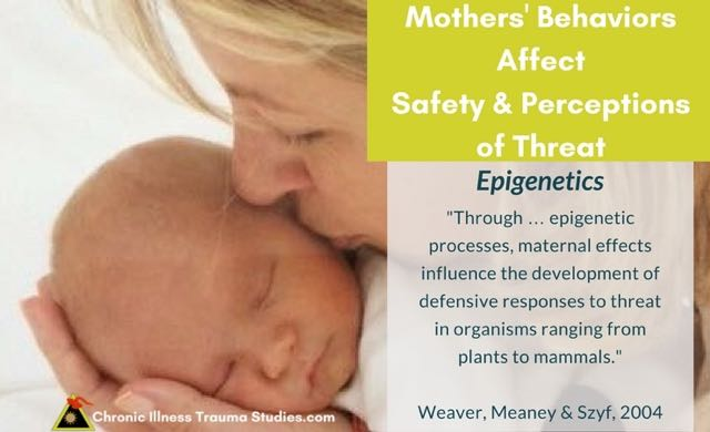 Maternal behaviors influence the development of her baby's defensive responses to threat - and a similar process is seen in plants, animals and humans. These interactions affect genes and suggest links between trauma and epigenetics.