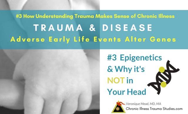 Stress in Pregnancy Birth Infanct Alters Epigenetics Chronic Disease Risk