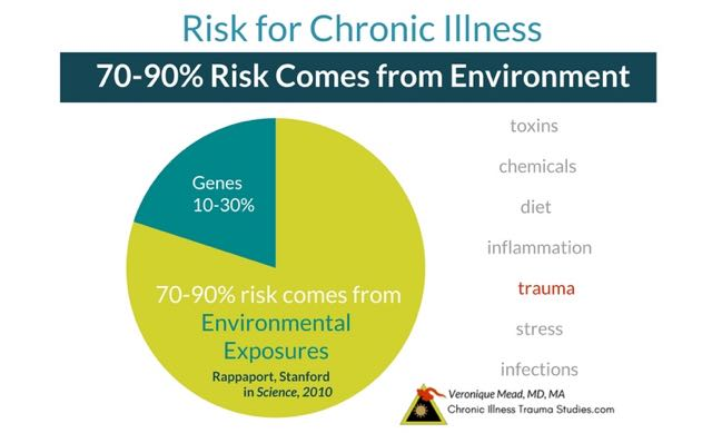 70 to 90% of risk for chronic illness is environmental and nature interacting with nurture. Genes may predispose us to risk, but most need diet, adversity, trauma and other life experiences to develop into disease. Citing Rappaport / Stanford. Chronic Illness Trauma Studies_Mead_CITS.