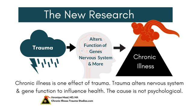 Links between chronic illness, trauma and the nervous system are found throughout the research literature and help make sense of symptoms to provide new treatment and prevention tools for healing. While some effects of unresolved trauma include PTSD, hypervigilance, anxiety, fight, flight, freeze, not all effects are psychological. The belief that trauma and chronic illness are psychological is false and out of date. Supportive, nurturing life experiences and safety interact with genes and decrease risk for chronic illness. Help heal effects of trauma that are inherent with being human. #autoimmune #chronicillness #me/cfs #ra #rd #ms #ibd #fibromyalgia #parkinson's #alzheimer's #IBD Chronic Illness Trauma Studies (CITS) _Mead