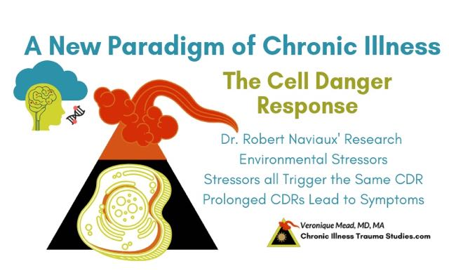 Naviaux cell danger response (CDR) offers a new paradigm of disease and chronic illness__CITS_Mead
