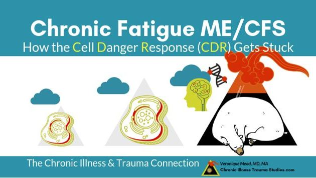 c1b358a91d47 ME/CFS and The Cell Danger Response: How the CDR Gets Stuck in Freeze  (Surveys)