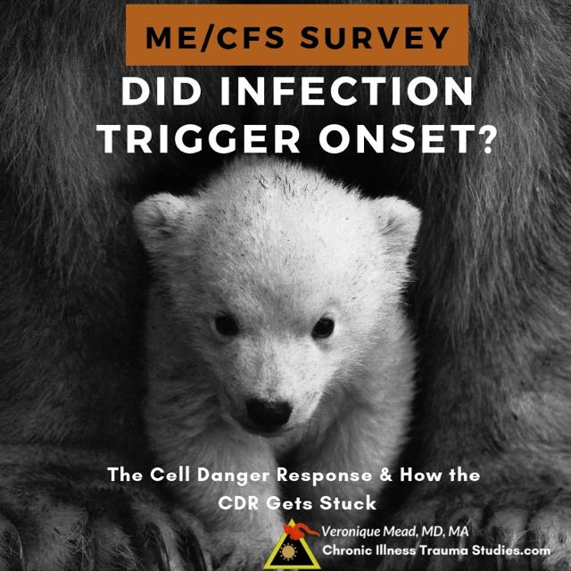 Infections are a common trigger for onset of me/cfs and other chronic illnesses such as #diabetes #autoimmune #asthma #lupus #RA Take the survey to compare histories for those whose disease started after an infection compared to those who started after trauma or stress or mold ... Mead CITS #questionnaire #test